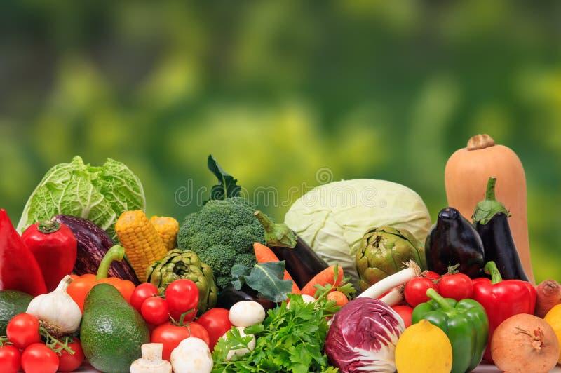 Ποικιλία των λαχανικών στο υπόβαθρο φύσης στοκ φωτογραφία