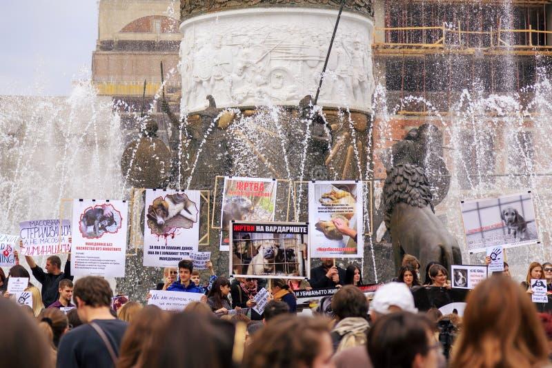 Πολίτες που διαμαρτύρονται τη βία προς τα σκυλιά οδών, στερεό στοκ εικόνες με δικαίωμα ελεύθερης χρήσης