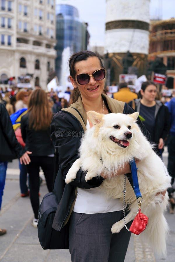 Πολίτες που διαμαρτύρονται τη βία προς τα σκυλιά οδών, στερεό στοκ εικόνα