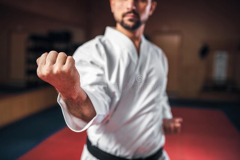 Πολεμικές τέχνες, μαχητής στο άσπρο κιμονό, μαύρη ζώνη στοκ εικόνες με δικαίωμα ελεύθερης χρήσης