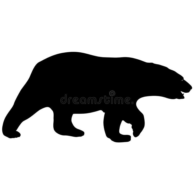Πολική αρκούδα σκιαγραφιών σε ένα άσπρο υπόβαθρο απεικόνιση αποθεμάτων