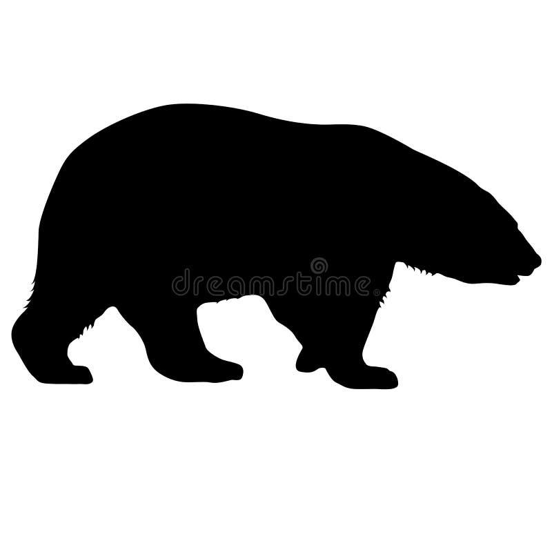 Πολική αρκούδα σκιαγραφιών σε ένα άσπρο υπόβαθρο ελεύθερη απεικόνιση δικαιώματος
