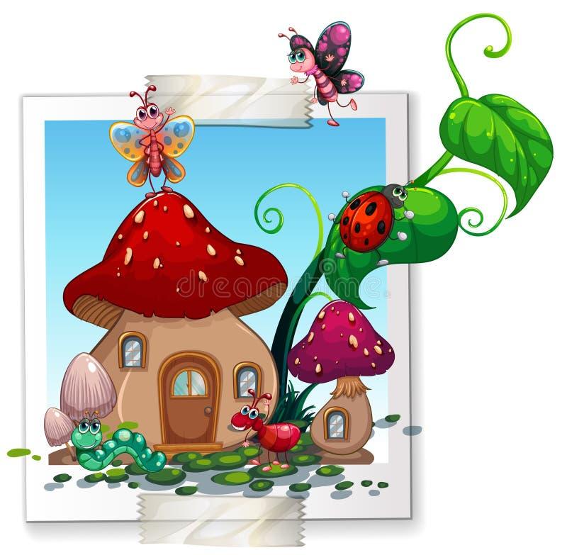 Πολλά έντομα στο σπίτι μανιταριών απεικόνιση αποθεμάτων