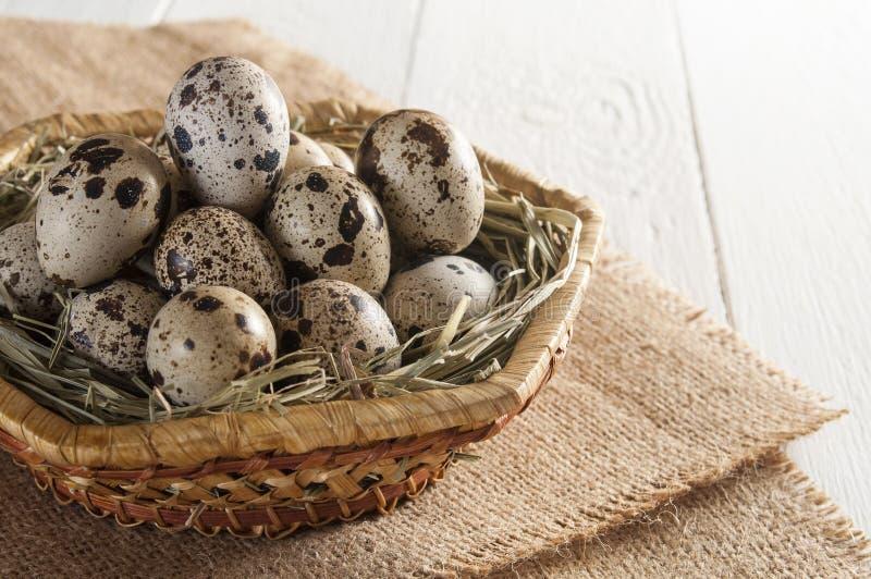 Πολλά αυγά ορτυκιών στο καλάθι στο άσπρο υπόβαθρο στοκ εικόνες με δικαίωμα ελεύθερης χρήσης