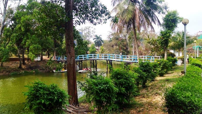 Πολλά δέντρα στο πάρκο είναι μικρές λίμνες και μια γέφυρα στοκ φωτογραφία