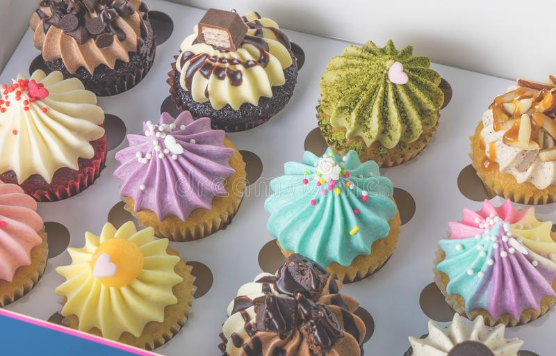 Πολλά ζωηρόχρωμα cupcakes παρόντα στον καθορισμένο εορτασμό κιβωτίων στοκ φωτογραφίες
