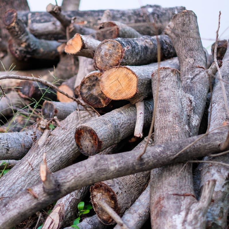 Πολλά ξύλινα κούτσουρα στοκ εικόνες