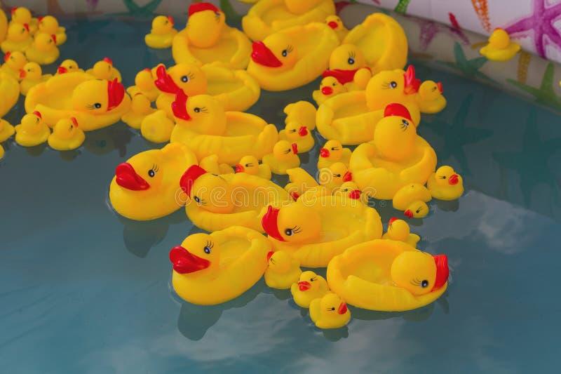 Πολλές λαστιχένιες κίτρινες πάπιες παιχνιδιών που επιπλέουν στη λίμνη των παιδιών στοκ εικόνα