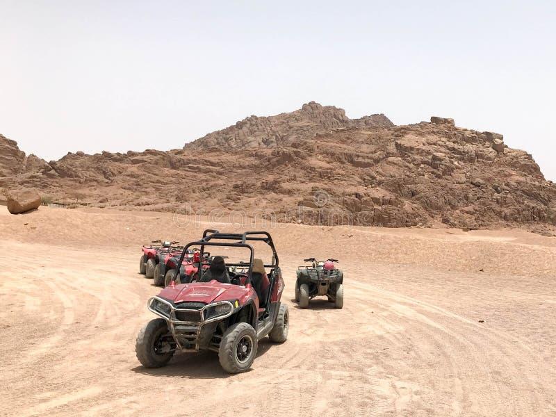 Πολλή τετράτροχη πολύχρωμη ισχυρή γρήγορη πλαϊνή τετράτροχη κίνηση buggies, αυτοκίνητα, SUVs στην αμμώδη καυτή έρημο στην άμμο στοκ εικόνα