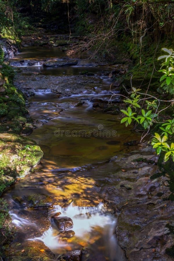 Πολλαπλάσια έκθεση του ρεύματος ενός ποταμού ΙΙΙ στοκ εικόνες