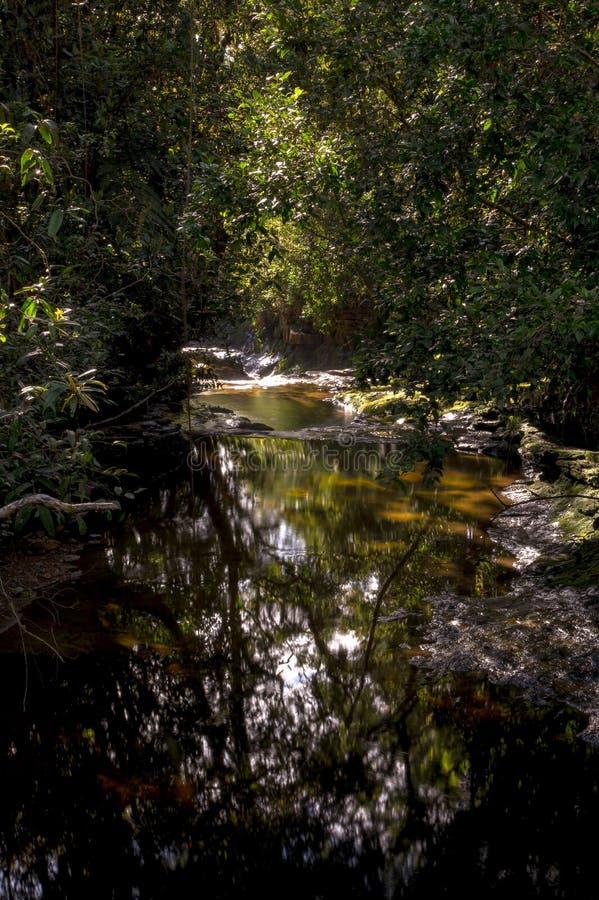 Πολλαπλάσια έκθεση του ρεύματος ενός ποταμού IV στοκ φωτογραφία με δικαίωμα ελεύθερης χρήσης
