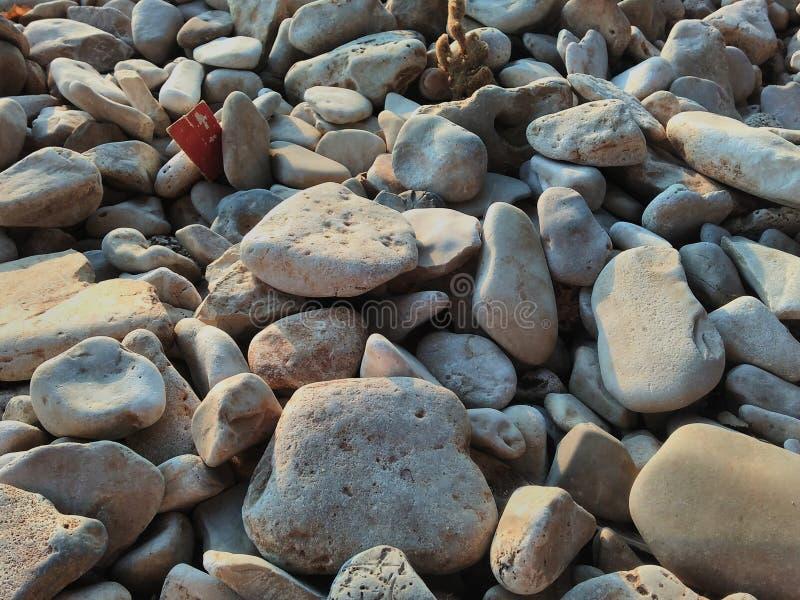 Πολλοί, πολλές πέτρες σε μια από την κροατική παραλία στοκ εικόνες