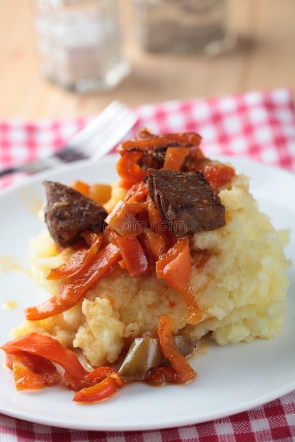πολτοποιηίδα goulash πατάτα στοκ εικόνα