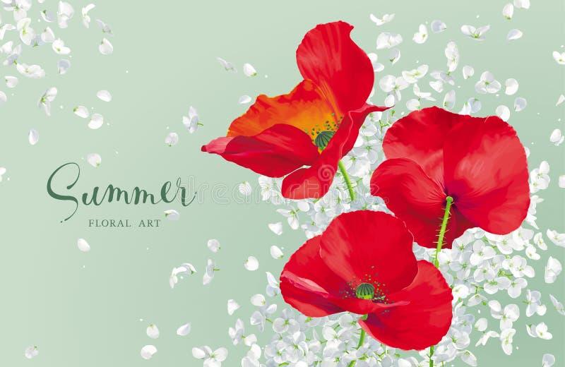 Πολυτελής φωτεινή κόκκινη διανυσματική παπαρούνα και ο λευκός Δρ λουλουδιών Hydrandea διανυσματική απεικόνιση