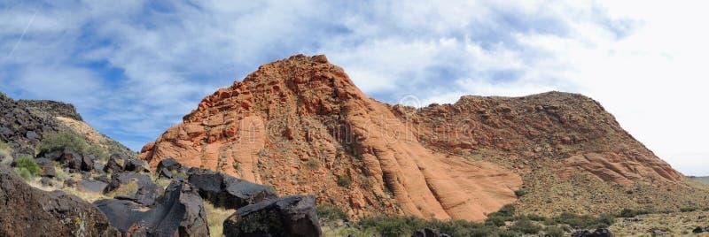 Πολυ άλγη χρώματος και Crustose τύπων λειχήνα ή σε έναν λίθο ψαμμίτη ερήμων στη νοτιοδυτική Γιούτα, ΗΠΑ κοντά στο ST George στοκ φωτογραφία με δικαίωμα ελεύθερης χρήσης