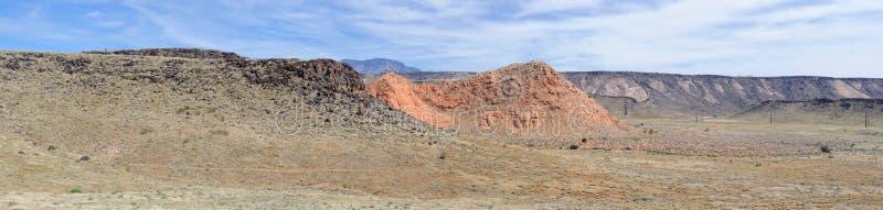 Πολυ άλγη χρώματος και Crustose τύπων λειχήνα ή σε έναν λίθο ψαμμίτη ερήμων στη νοτιοδυτική Γιούτα, ΗΠΑ κοντά στο ST George στοκ εικόνα
