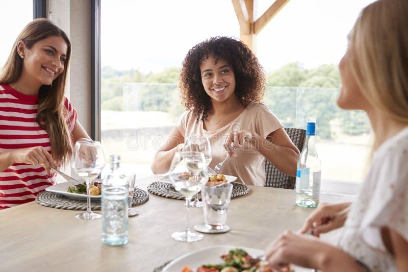Πολυ εθνική ομάδα τριών ευτυχών νέων ενήλικων γυναικών που τρώνε και που μιλούν κατά τη διάρκεια ενός κόμματος γευμάτων στοκ εικόνες