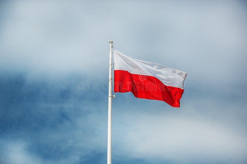 Πολωνική εθνική σημαία στοκ εικόνα με δικαίωμα ελεύθερης χρήσης
