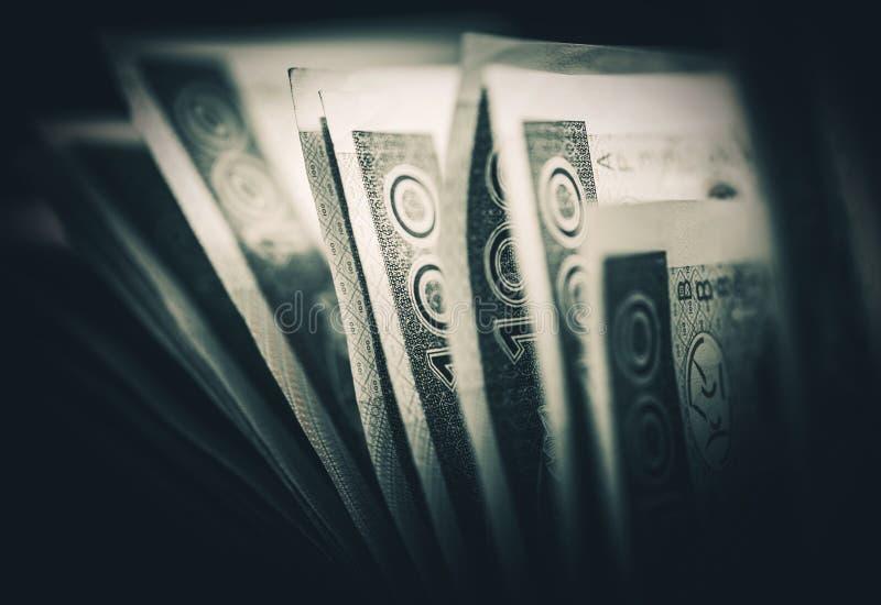 Πολωνική οικονομική έννοια Zloty στοκ εικόνα με δικαίωμα ελεύθερης χρήσης