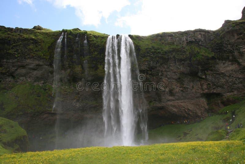 Πολύβλαστος καταρράκτης Seljalandsfoss στην Ισλανδία στοκ εικόνα