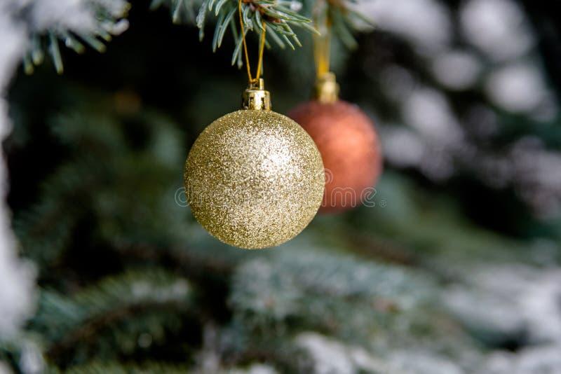 Πολύχρωμες σφαίρες στους κλάδους χριστουγεννιάτικων δέντρων στοκ φωτογραφία