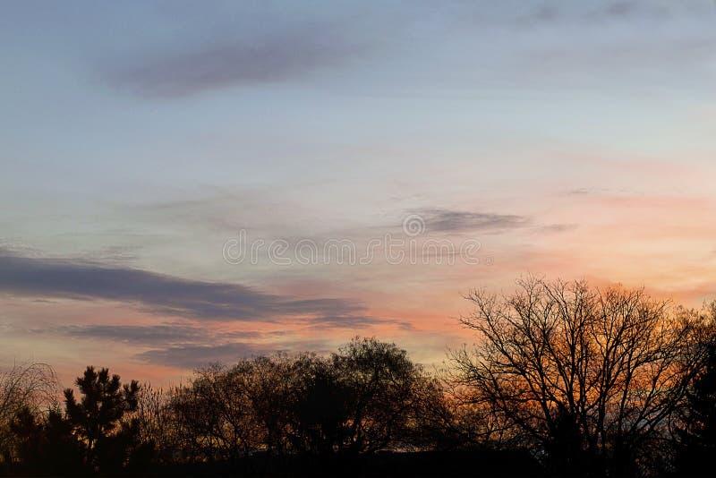 Πολύ νωρίς αυγή με τα δέντρα εσενών στο σπίτι μου στοκ φωτογραφίες με δικαίωμα ελεύθερης χρήσης