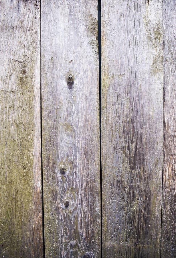 Πολύ παλαιά ξύλινη σύσταση, ξυλουργική, κινηματογράφηση σε πρώτο πλάνο στοκ εικόνες