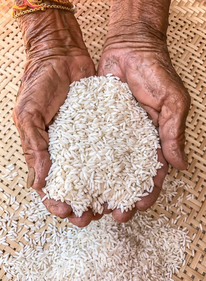 Πολύ παλαιό ανώτερο ζαρωμένο χέρια δέρμα γυναικών με το ρύζι στοκ φωτογραφίες