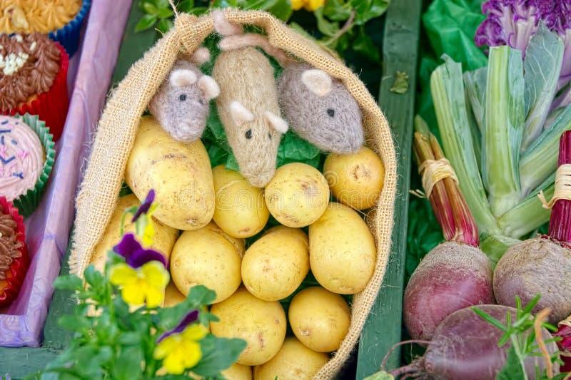 Φεστιβάλ συγκομιδών Ποντίκια μαλλιού με τα λαχανικά & κέικ στην επίδειξη στοκ εικόνα με δικαίωμα ελεύθερης χρήσης
