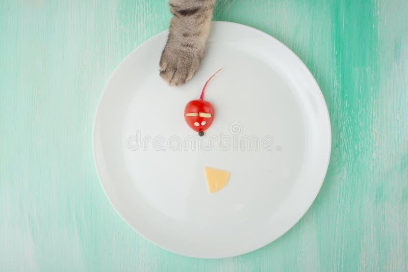 Ποντίκι από μια ντομάτα και μια φέτα του τυριού με τα πόδια μιας γάτας, ένας δημιουργικός από τα τρόφιμα σε ένα άσπρο πιάτο Η ένν στοκ φωτογραφίες με δικαίωμα ελεύθερης χρήσης