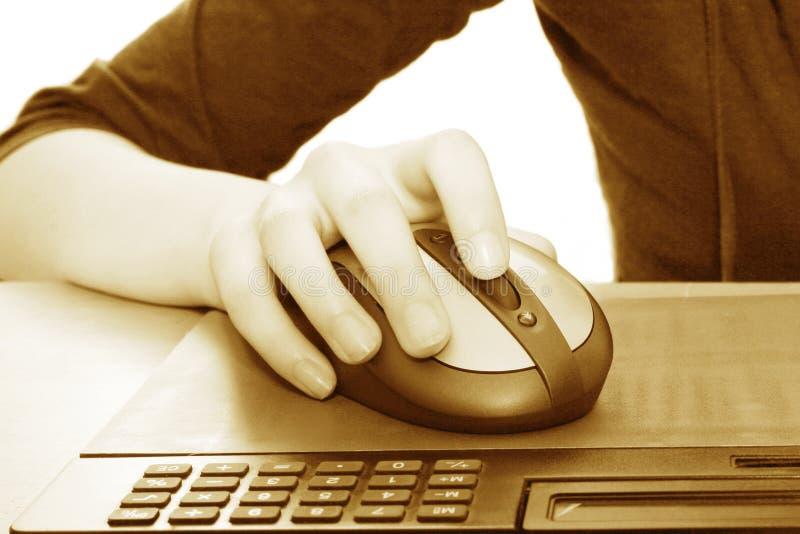ποντίκι υπολογιστών στοκ εικόνα με δικαίωμα ελεύθερης χρήσης