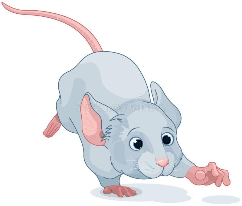 Ποντίκι χωρών των θαυμάτων διανυσματική απεικόνιση
