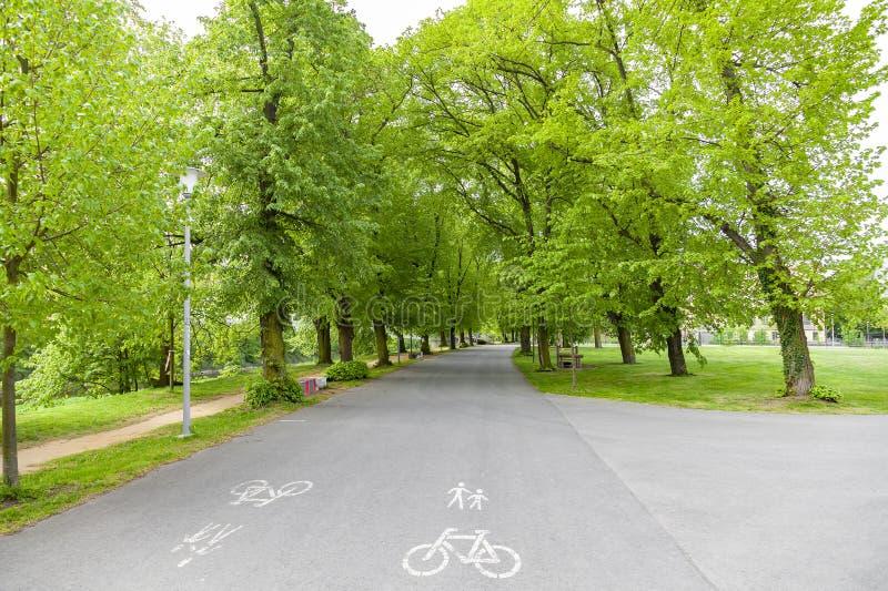 Πορεία ασφάλτου ποδηλάτων στο πάρκο στοκ φωτογραφίες με δικαίωμα ελεύθερης χρήσης