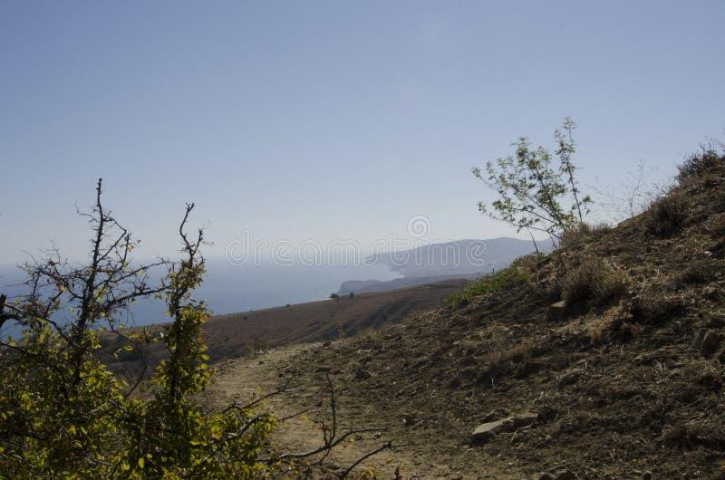Πορεία βουνών μεταξύ των θάμνων που αγνοούν τη Μαύρη Θάλασσα στοκ εικόνα