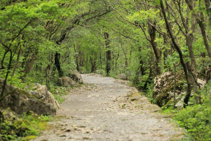 Πορεία βουνών σε Paklenica στοκ φωτογραφία με δικαίωμα ελεύθερης χρήσης