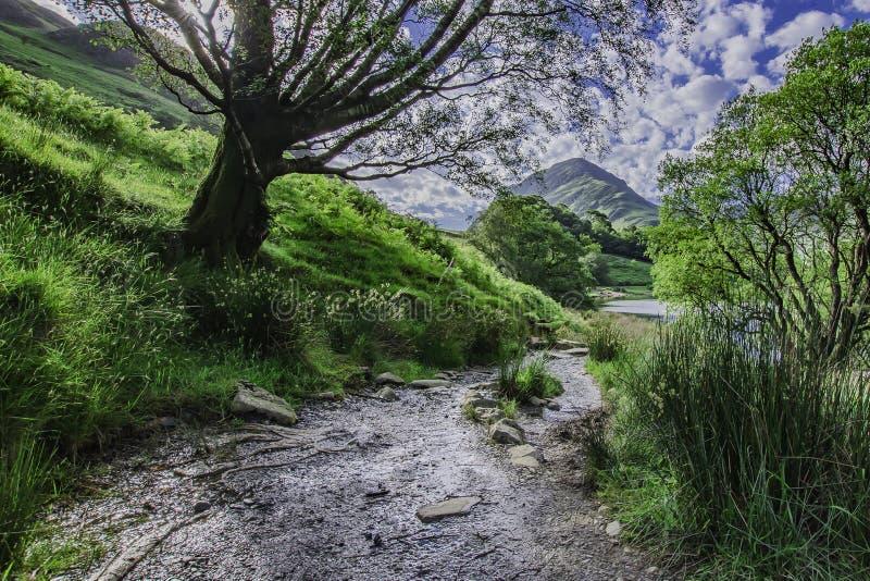 Πορεία γύρω από τη λίμνη βουνών στοκ εικόνες με δικαίωμα ελεύθερης χρήσης