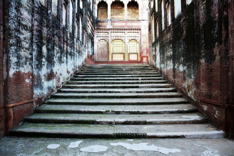 Πορεία ελεφάντων - σκαλοπάτια στοκ φωτογραφία με δικαίωμα ελεύθερης χρήσης