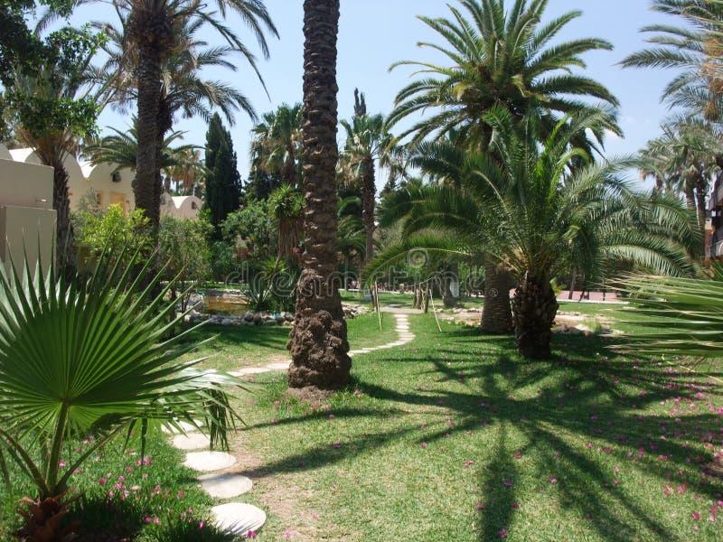 Πορεία κήπων στο ξενοδοχείο στοκ εικόνες