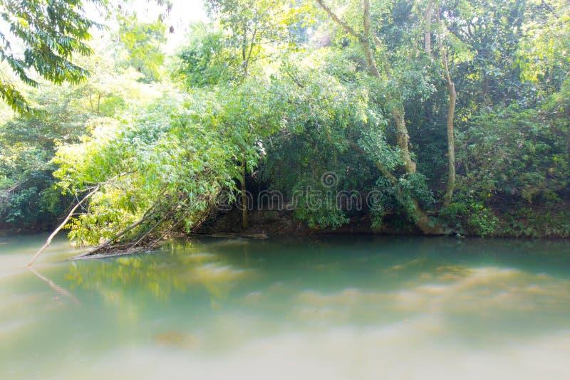 Πορεία μέσω του δάσους και κατά μήκος του ποταμού στοκ εικόνες με δικαίωμα ελεύθερης χρήσης