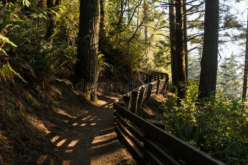 Πορεία με το ξύλινο κιγκλίδωμα που δίνει την πρόσβαση σε μια περιοχή της νότιας ακτής του Όρεγκον, ΗΠΑ στοκ εικόνες