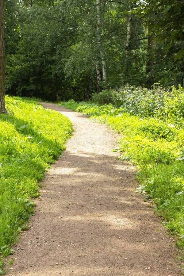 Πορεία πάρκων με το μαλακό ψίχουλο πετρών, θερινό κάθετο υπόβαθρο στοκ εικόνα με δικαίωμα ελεύθερης χρήσης