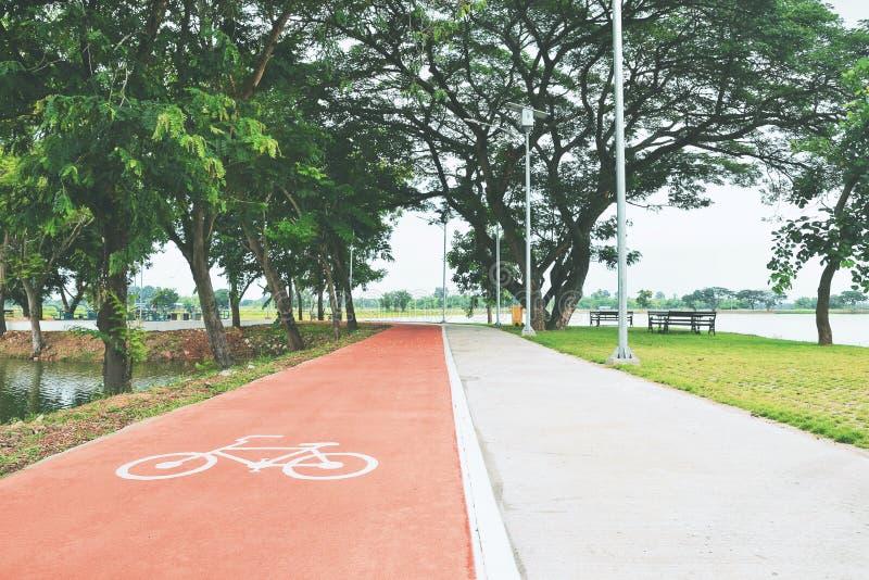 πορεία ποδηλάτων στο πάρκο στοκ εικόνα