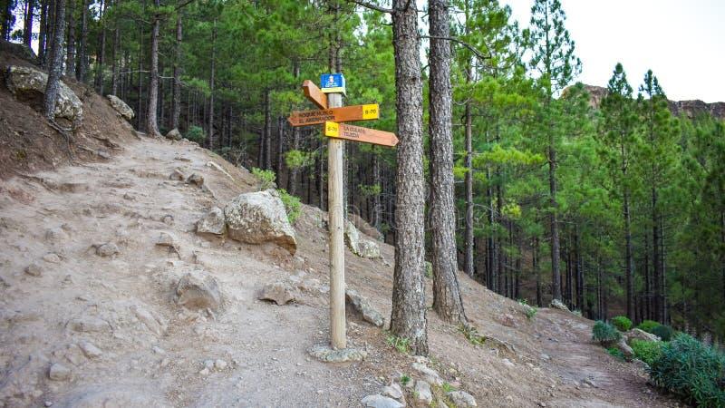 Πορεία που οδηγεί στο βουνό στοκ φωτογραφία με δικαίωμα ελεύθερης χρήσης