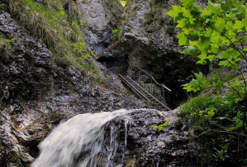Πορεία σκαλών στο diery Janosikove στα βουνά Mala Fatra στη Σλοβακία στοκ εικόνα