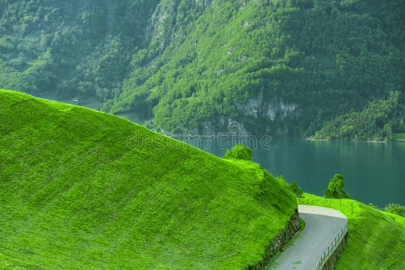 Πορεία στον πράσινο λόφο με τη λίμνη και βουνό στο υπόβαθρο στοκ φωτογραφία με δικαίωμα ελεύθερης χρήσης