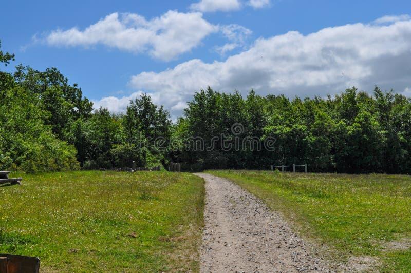 Πορεία στο δανικό πάρκο στοκ εικόνα