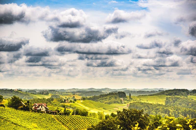 Πορεία της Αυστρίας, νότιο Styria περιοχής Sulztal αμπελώνων της Σλοβενίας, χώρα κρασιού διαμορφωμένη στην καρδιά οδό στοκ εικόνες