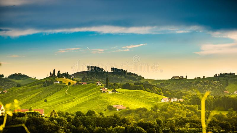 Πορεία της Αυστρίας, νότιο Styria περιοχής Sulztal αμπελώνων της Σλοβενίας, χώρα κρασιού διαμορφωμένο στο καρδιά σημείο τουριστών στοκ φωτογραφία