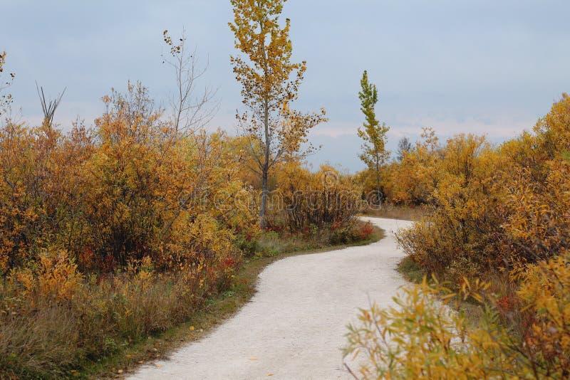 Πορεία τοπίου φθινοπώρου στοκ εικόνες
