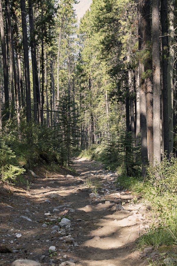 Πορεία Banff στοκ εικόνες